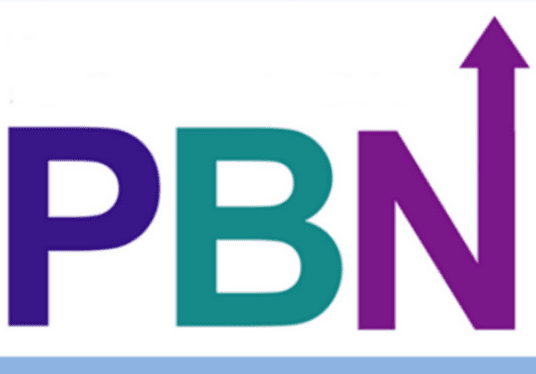 Boost Your Ranking With 40 PBN Homepage Links, DA 20+