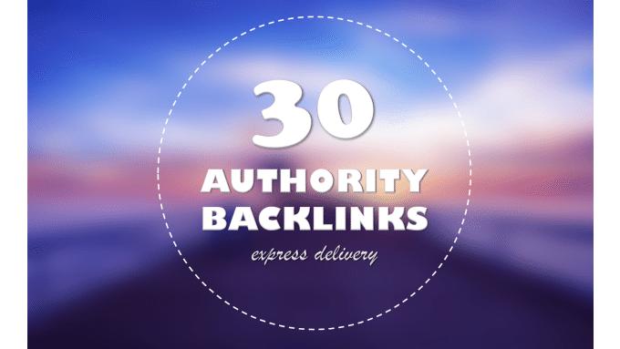 provide 30 Seo backlinks for website improvement