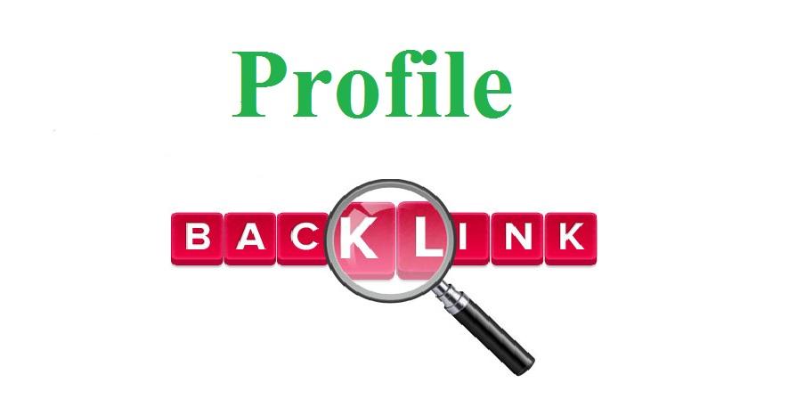 I Manually Build High PR 50 Profile Backlinks