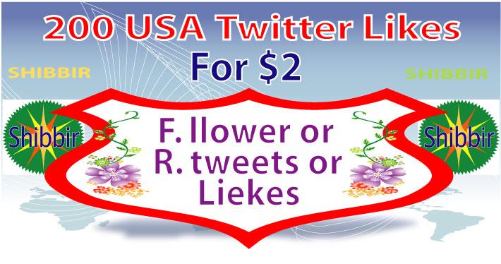 add 200 USA Twitter Likes