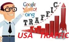 Drive USA Keyword Targeted,  Organic Traffic