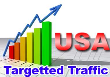 i will send unlimited usa web traffic for one month