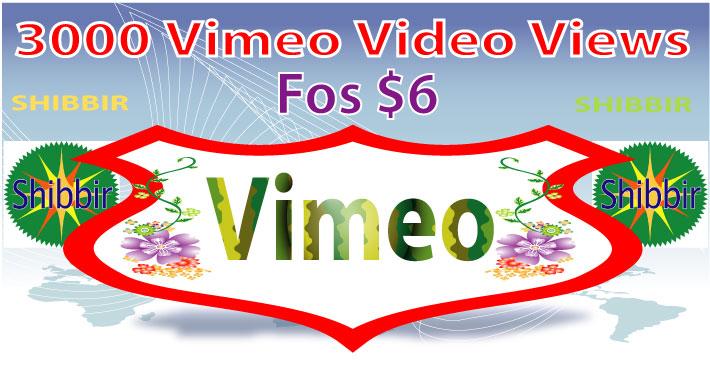 Give you 3000 Vimeo video views