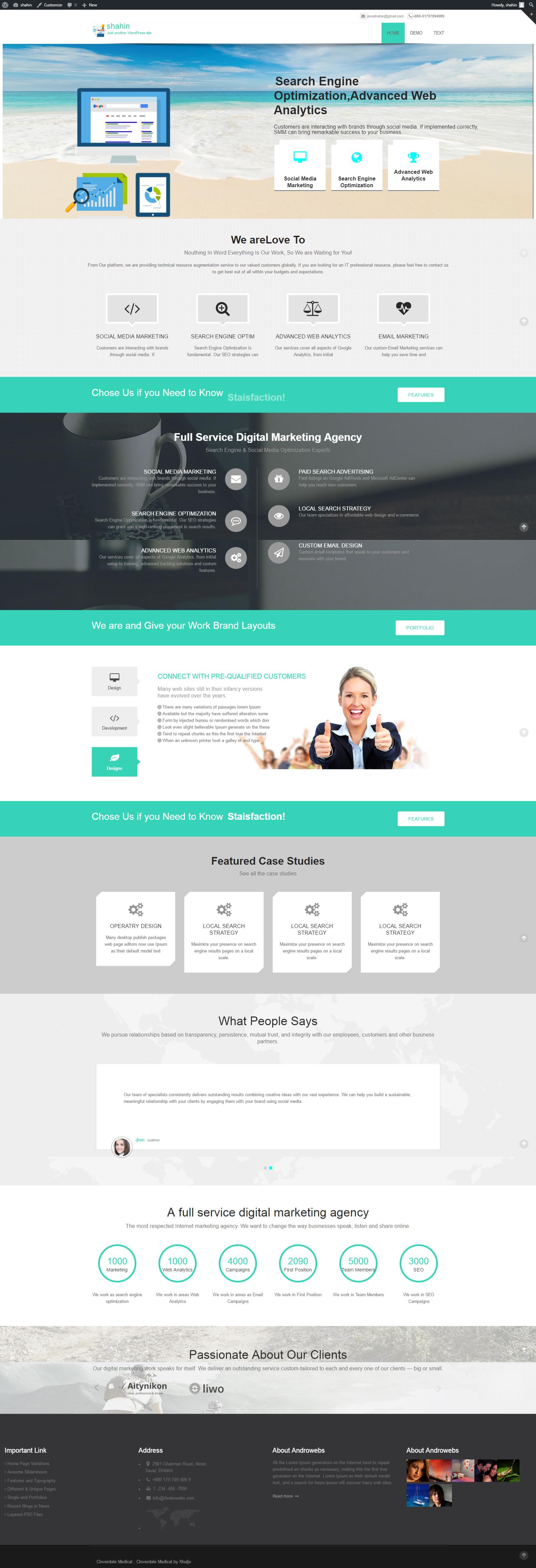 Seo Agency Wordpress Theme full responsive