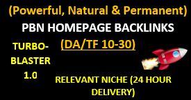 Permanent,  Natural & Powerful PBN Backlinks DA/TF 10-30 + Unique Articles