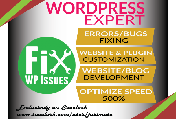 I will fix any wordpress errors or issues within 3 hours