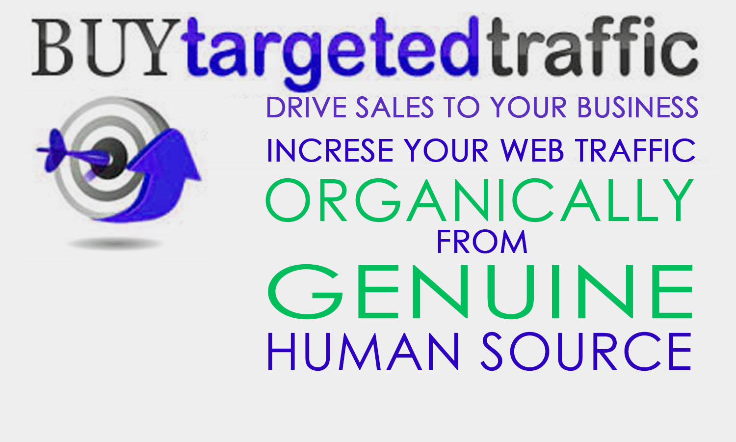 Drive 100,000 Real US,  Europe,  AU,  Keyword Targeted Traffic low bounce rate visitors
