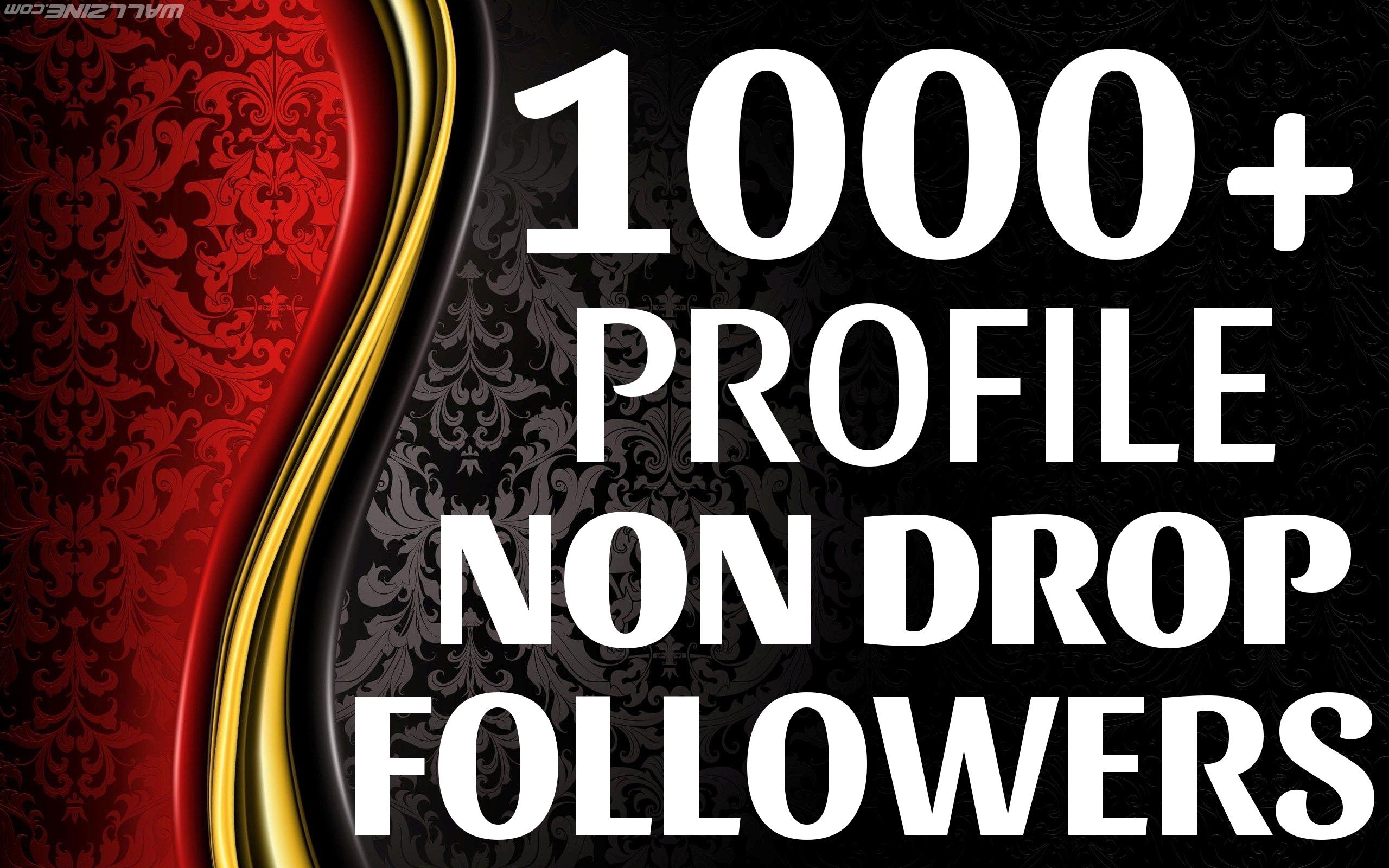 Add 1000 High Quality Fast Profile Followers NON DROP PERMANENT Guaranteed