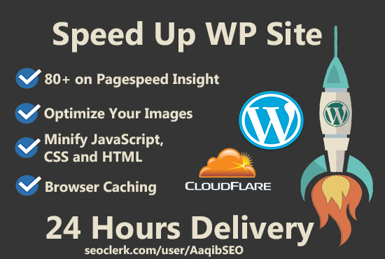 SEO-Web-Hosting-Pure-SSD-for-your-Website