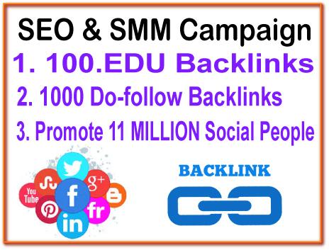 SEO & SMM Campaign - 100. EDU Backlinks- 1000 Do ...