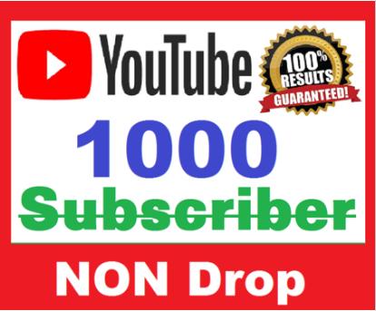 Provide you 1000 Non Drop Guarantee Youtube Subscriber
