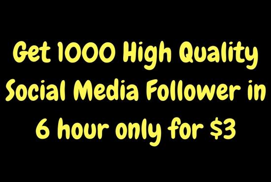 Get 1000 non drop follower your social media profile