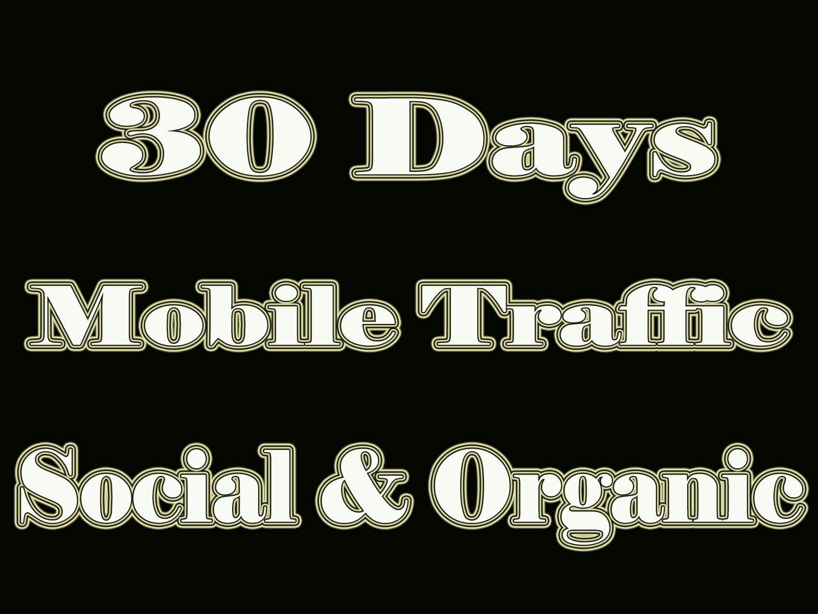 Get MOBILE Web Traffic 30 days