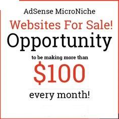 Micro Niche Adsense Websites For Sale.