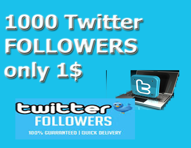 Provide Real 1,000 Tw-itter f0ll0wers