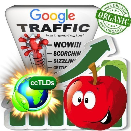 Quality Search Traffic from Google. com for 30 days