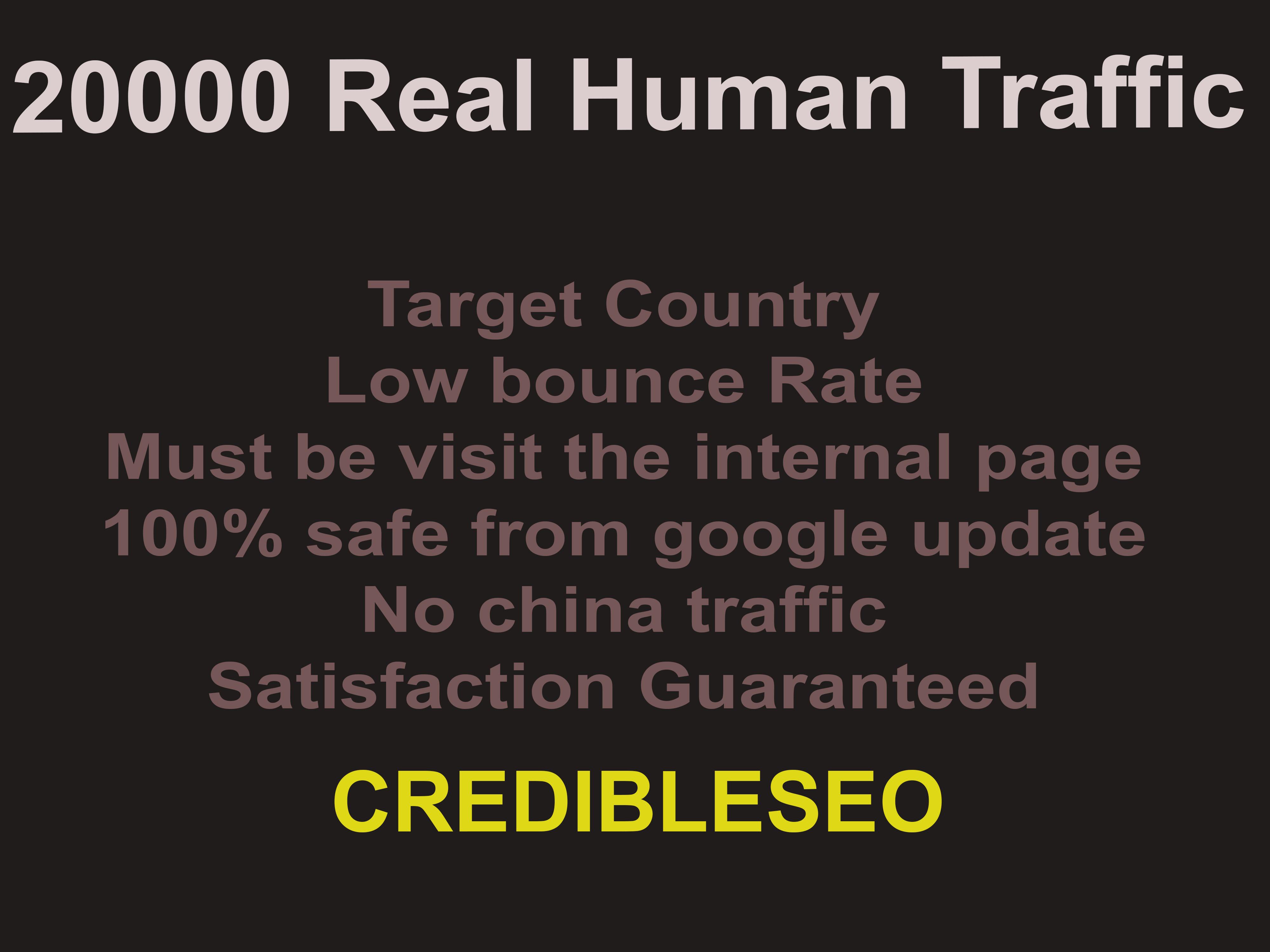 Deliver 20k Real Human Website Traffic