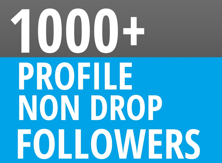 Start-Instant-1000-Profile-Followers-High-Quality-Organic-SEO-Package