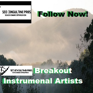 Breakout Instrumental Artists You Should Follow Playlist SEO Promotion Top Ranked Service 30 Days