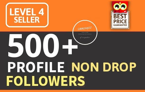 Add 500+ High Quality Fast Profile Followers NON DROP PERMANENT GUARANTEED