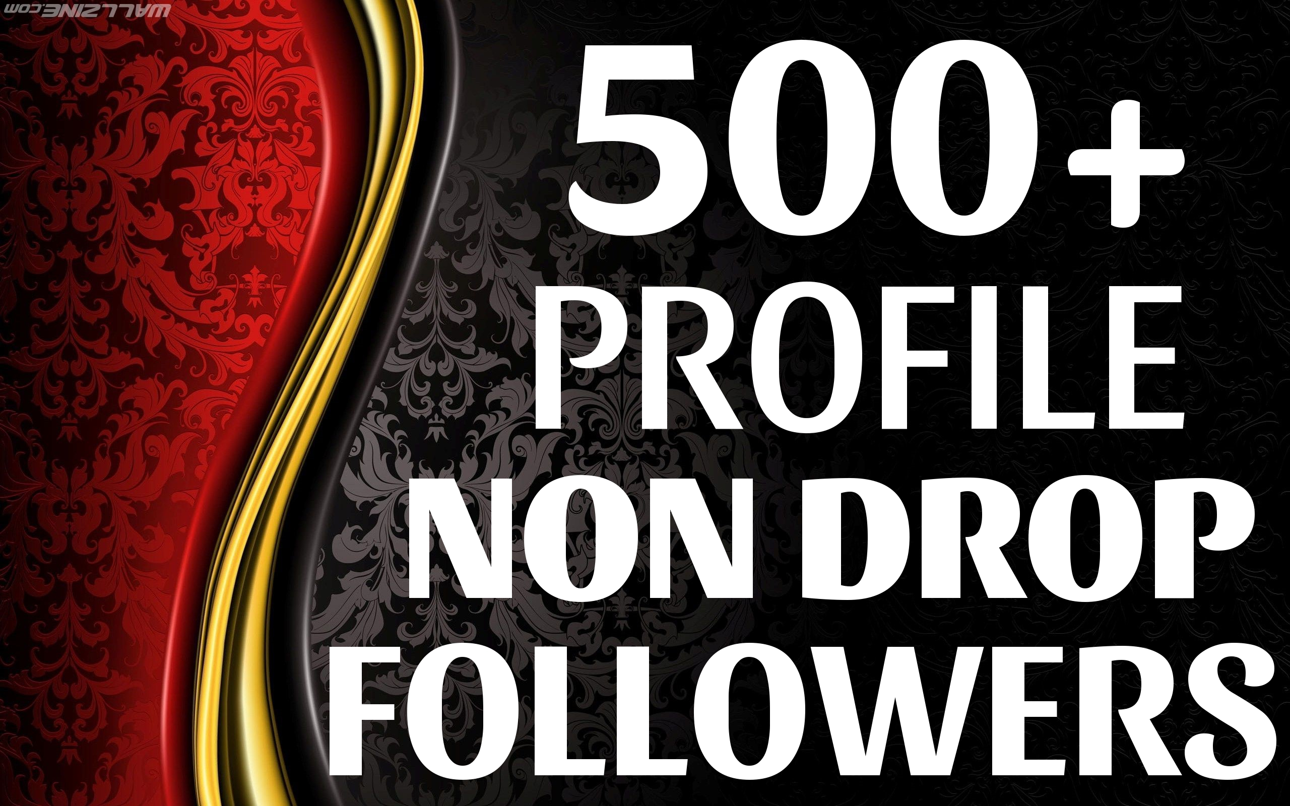 Add 500+ High Quality Fast Profile Followers NON DROP to Your Account