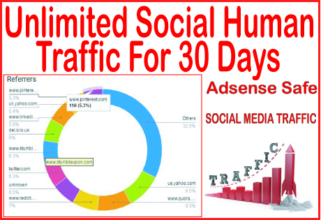 Do 31 days of Human Traffic from social & organic...