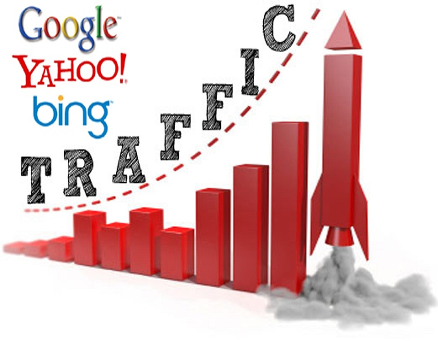 Give you 1000 real human traffic to your website