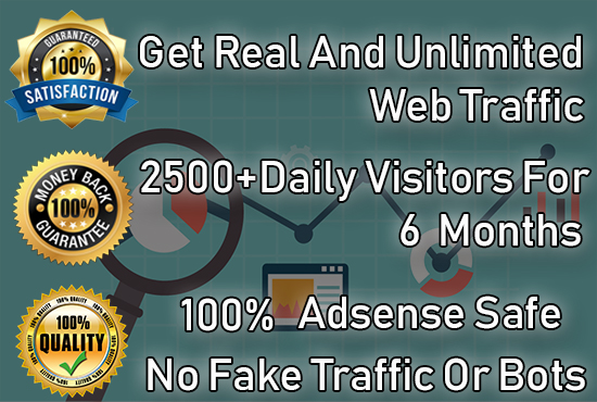 We will Send 2500+ Safe Visitors / Traffic to your website Or Any other Link