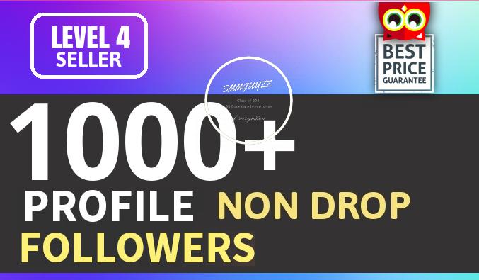 Add Fast 1000+ Profile Followers High Quality And NON DROP Guaranteed