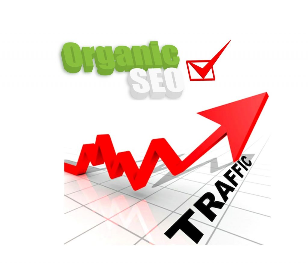 Drive 120,000 Organic Sales Traffic to your e-commerce store website