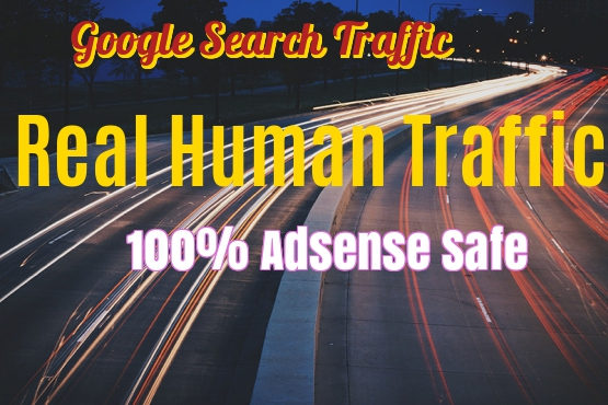 Improve Your Google And ALEXA RANKING With Organic Search Traffic