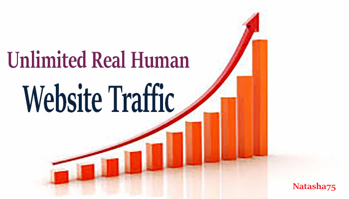 Unlimited Real Human Website Traffic for 6 month