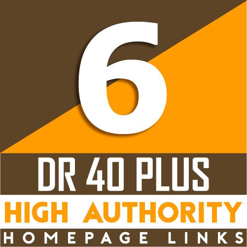 6 Manual HIGH DR 40 Plus Homepage PBN Backlinks