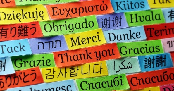 Translation Dutch/ English/ Italian & other langu...