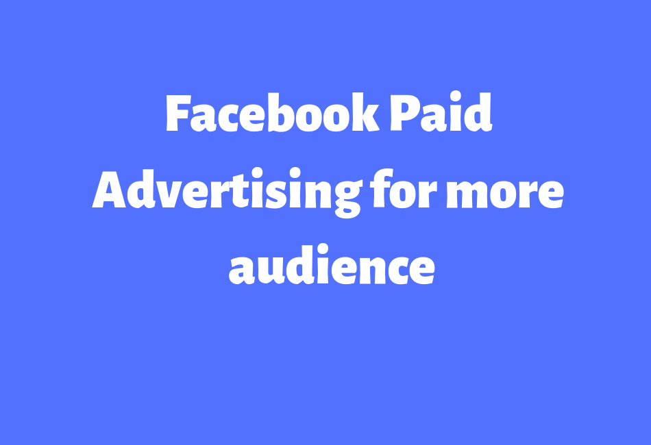 Run a Facebook Paid Ad Campaign To grow your Fans