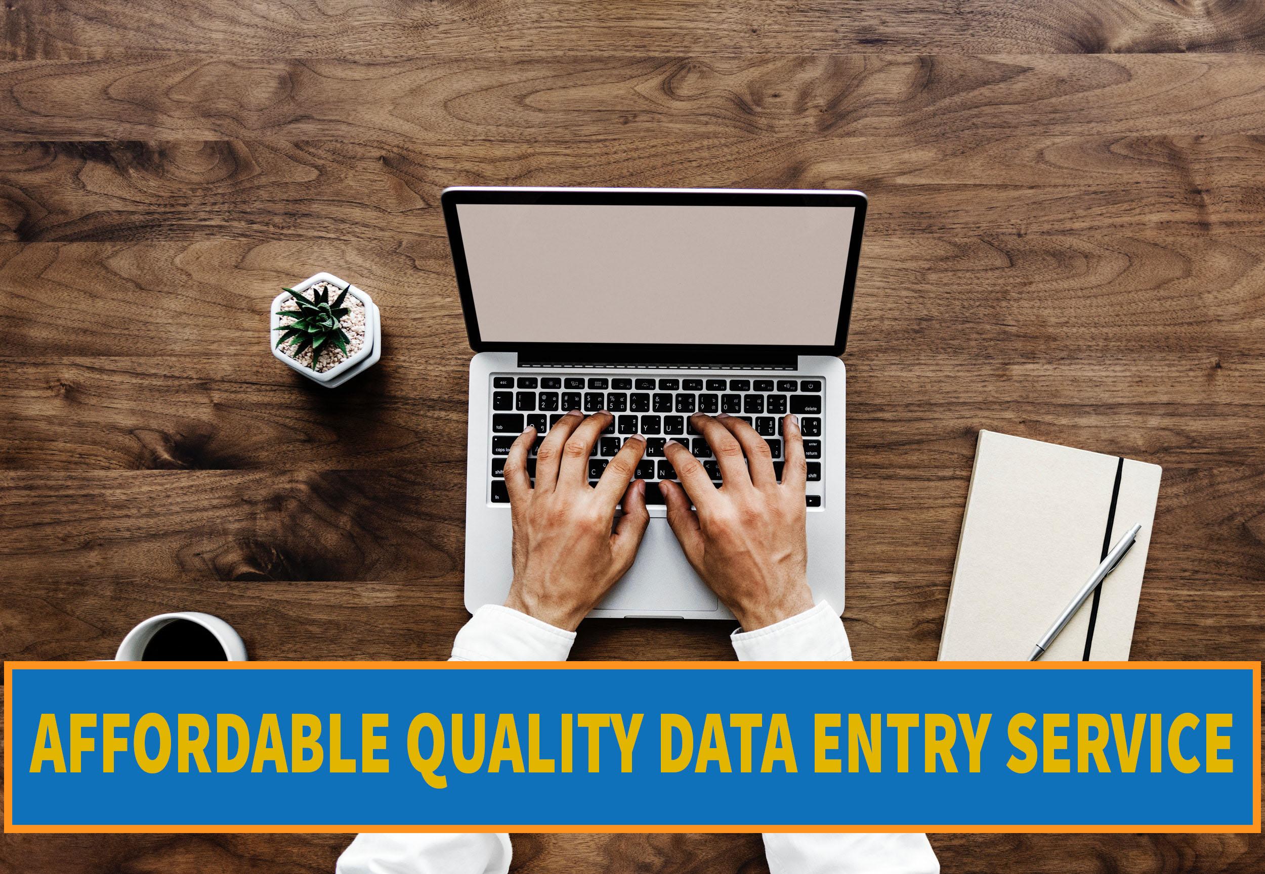 Affordable Data Entry Job