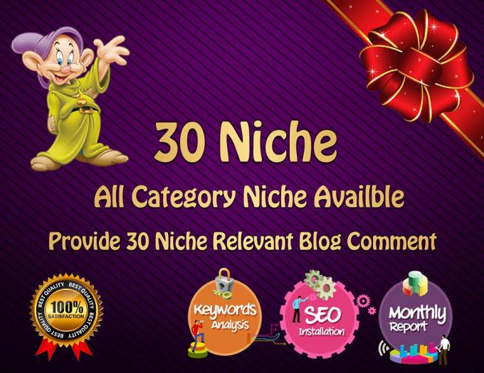 Create 30 Niche Relevant Blog Comment