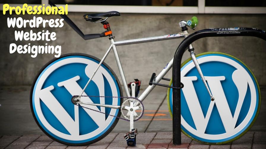 Create A Professional Wordpress Website Or Design