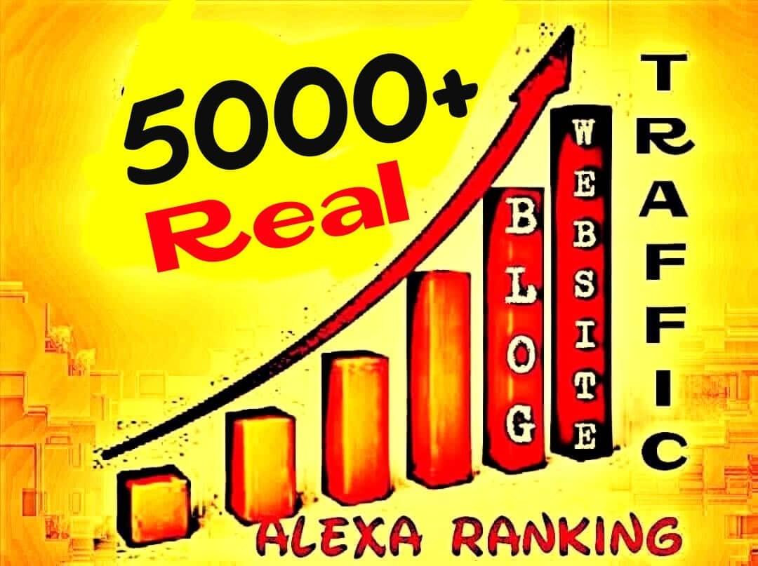 Drive 5000+ Worldwide Real Human Web Traffics professionally