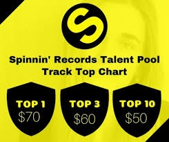 Provide you Spinnin Records Track Rank Talent Pool Top Chart list