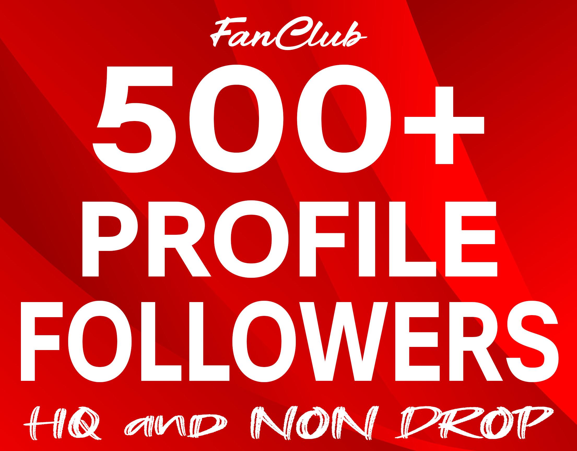 Add 500+ Profile Followers High Quality & Non Drop Service