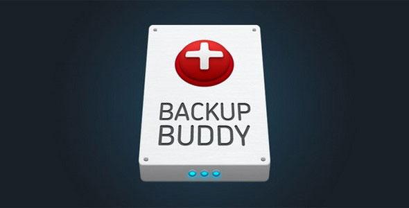BackupBuddy Back Up Restore and move Wordpress Plugin
