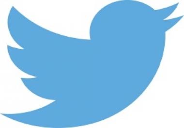 twitter korean Followers