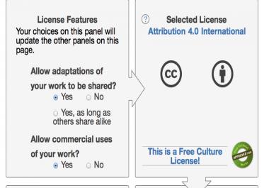 Copyright & License My Website
