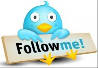 Need TWitter Auto followers software