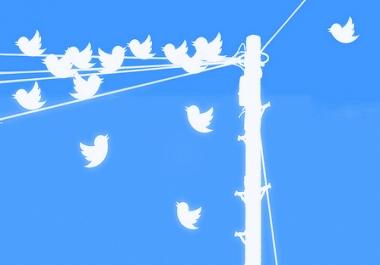 I need 100,000 Twitter followers