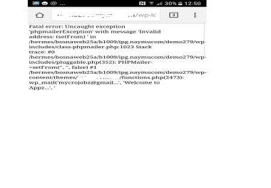 Wordpress Errors correcting