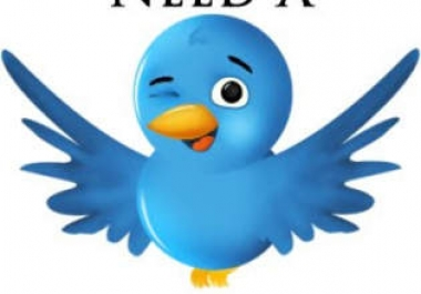 500 USA twitter follower within few hours
