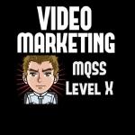 Video Marketing Domination,  Website Traffic from Videos