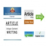 Get 500 Word SEO Optimized article writing service with BONUS